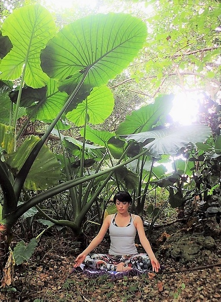 nature yoga,鈴木伸枝